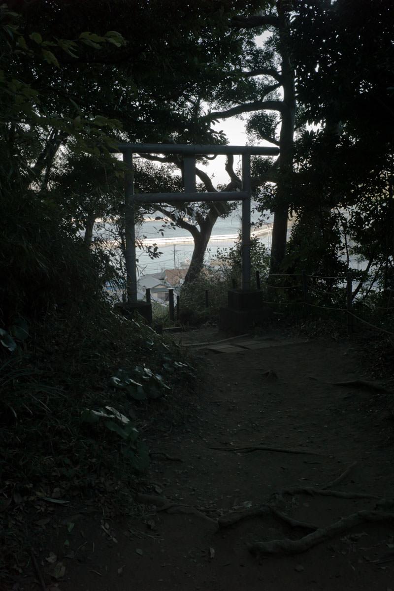 Leica (ライカ) で撮った観音崎の写真
