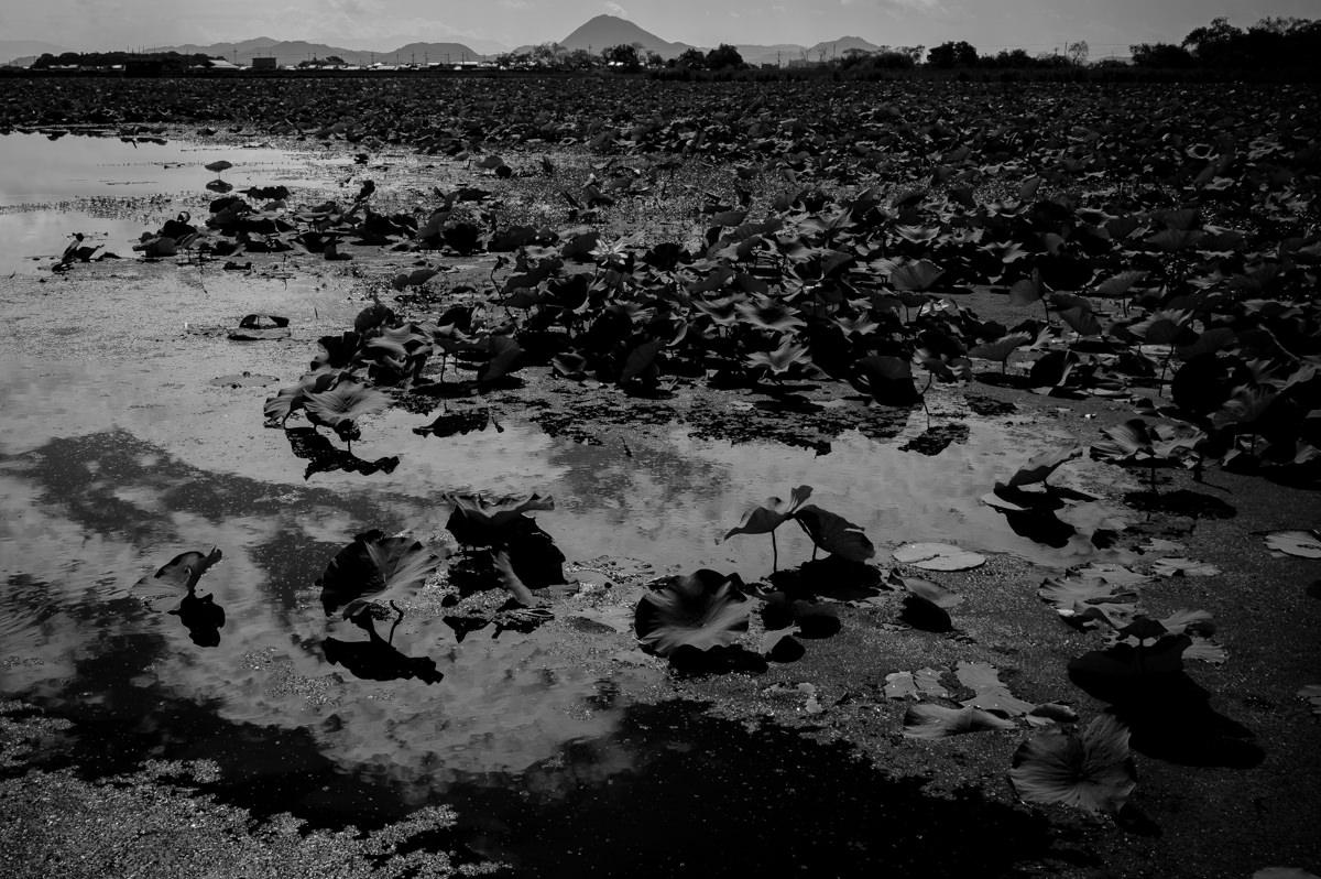 Leica (ライカ) で撮ったモノクロ風景